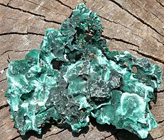 Mal03, Velvet-Malachite, Shaba, DRC
